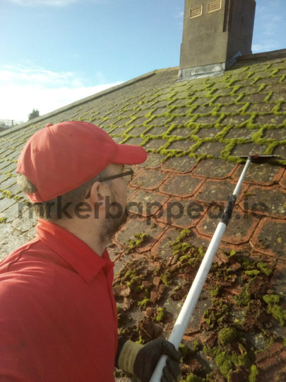 Softwash Roof Cleaning Amp Moss Removal Dublin Kildare