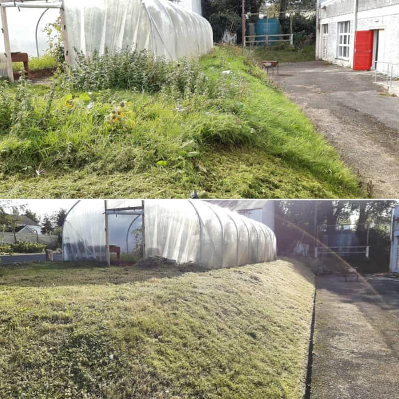 gardeners cutting long grass